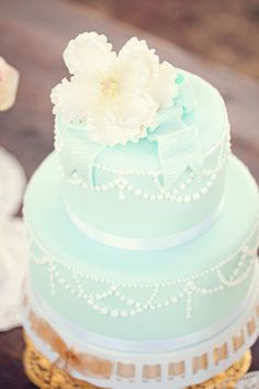 Gorgeous mint green wedding cake. by www.amandawatsonphoto.com