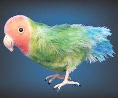 Handpainted mohair birds handmade by award winning mohair bird artist Cindy L Malchoff.