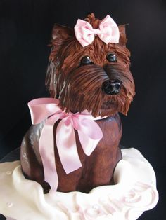 - This cake was something I'd seen Anne Heap do and ever since, Id been wishing I could try it myself. I just had a girl request this for her daughter who loves Yorkie dogs! The head is RKT and the body is pink marble cake. And let me tell you, this was definitely a test of my skills! What a cake-workout!