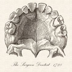 """In 1728 a French dentist named Pierre Fauchard published a book titled """"The Surgeon Dentist"""".  It was the first publication that featured methods for straightening teeth.  Because of this Fauchard is often credited with inventing modern orthodontics! - Morristown Pediatric Dentistry 