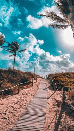 Beach / Summer // Playa / Verano