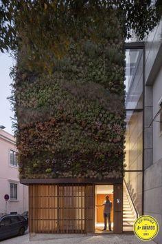Long green facade