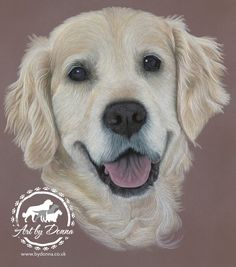 Golden Retriever Portrait 'Eve' by UK Dog Portrait Artist, Donna Pet Portrait Drawings and Paintings http://bydonna.co.uk