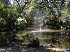 Micke Grove Regional Park in Lodi, CA