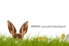 Frohe Ostern! Happy Easter, Real Estate
