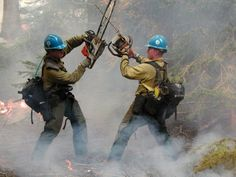 A great place to learn how to really become a hotshot firefighter! Some important, basic advice on getting the job of your dreams, traveling the west while fighting violent conflagrations. Firefighter Memes, Firefighter Pictures, Wildland Firefighter, Volunteer Firefighter, Firefighter Love, Fire Dept, Fire Department, Becoming A Firefighter, Driving Jobs