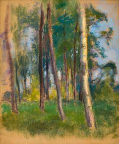 eero järnefelt #tree #art Helene Schjerfbeck, Chur, Tree Art, Les Oeuvres, Still Life, National Parks, Watercolor, Landscape, Portrait