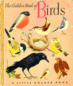 Golden Book of Birds, 1943, 4th printing... Fedor Rojankovsky, illustrator
