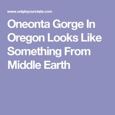 Oneonta Gorge In Oregon Looks Like Something From Middle Earth