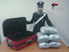 Sala Consilina (Salerno), trasportava in un trolley 11kg di Marijuana-Amnesia: arrestato un 50enne