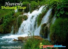 "Shillong is the capital and hill station of Meghalaya, also known as ""Abode of Cloud"", one of the smallest states in India.       http://journeyshanti.com/packages/india-leisure-holidays/shillong-tour-package"