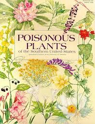 Poisonous Plants to Avoid While Scavenging for Free Food -Posted on October 25, 2013