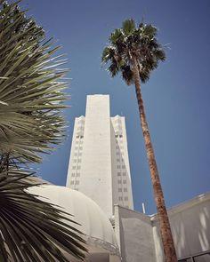 Classic Vegas view  #palmtrees #cityphotography #vegasviews #tropicanalasvegas #poolseason #citytravel #travelbug #ig_vegas #mobilephotography #shotonpixel2xl City Photography, Mobile Photography, Tropicana Las Vegas, Travel Bugs, Business Travel, Palm Trees, Seasons, Building, Classic