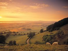 The beautiful picture postcard Cotswold's in England