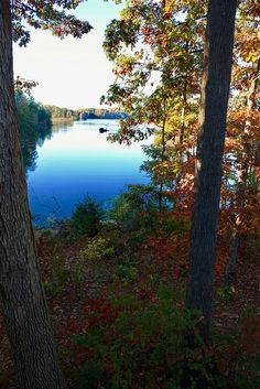 The view from cabin 17 is hard to beat at Smith Mountain Lake State Park,Va