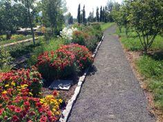 Cutting garden along the walking trails | The Allison Inn & Spa