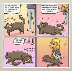 CatsuTheCat est un site qui propose des bandes dessinées vraiment amusantes mais également différents produits autour du chat.