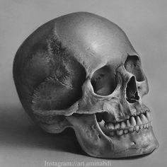 Skull Tattoo Design, Skull Tattoos, Art Tattoos, Pencil Drawings, Art Drawings, Skull Model, Skull Reference, Skull Sketch, Totenkopf Tattoos