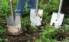 Veja como planejar uma horta orgânica e saiba que tipo de hortaliça se adapta melhor às épocas do ano a partir de um calendário de plantio prático.