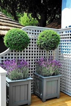 62 Amazing, fresh ideas for the front yard and the garden .- 62 Erstaunliche, frische Ideen für den Vorgarten und den Garten – Garten Design 62 amazing fresh ideas for the front yard and garden, # amazing yard - Diy Garden, Garden Cottage, Dream Garden, Garden Pots, Garden Fences, Garden Privacy, Shabby Chic Garden, Summer Garden, Back Gardens
