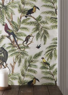 Jungle Print Natural World, Wallpaper, Jungle Print From the Natural World collection by Miki Rose, a beautiful jungle design from Graduate Collection. Wallpaper Direct, Print Wallpaper, Wallpaper Jungle, Monkey Wallpaper, Wallpaper Designs, Bedroom Wallpaper, Animal Wallpaper, Nature Wallpaper, Tropical Wallpaper