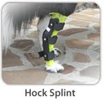 Hock Splint could be adapted to be a Prostethic?