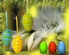 Bmx, Happy Easter, Coconut, Hearts, Moving Pictures, Background Images, Quotes, Flowers, Happy Easter Day