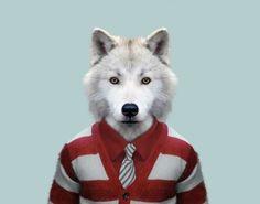 25 montagens hilárias de animais vestidos como humanos - Mega Curioso