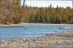 The Kasilof River just outside of Soldotna, Alaska.