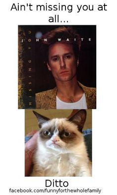 John Waite vs Grumpy Cat Crazy Cat Lady, Crazy Cats, John Waite, Grumpy Cat, Cat Memes, Fun Stuff, Laughter, Medicine, Joker