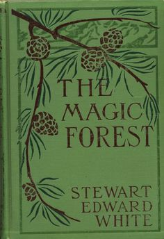 THE MAGIC FOREST, A Modern Fairy Tale, by Stewart Edward White, Illustrations by Gleeson. Grosset & Dunlap for MacMillan's Standard Library. This charming vintage book is all original with a beautiful stamped illustrated cover on cloth binding. Vintage Book Covers, Vintage Books, Vintage Ideas, Vintage Library, Old Books, Antique Books, Book Cover Art, Book Art, I Love Books
