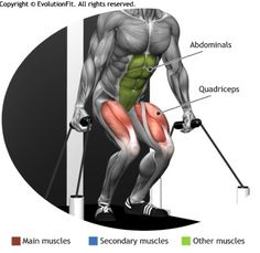 QUADRICEPS - SQUAT CABLE MACHINE