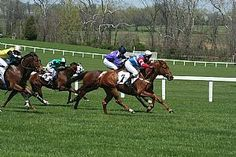 Middleburg Spring Races  Venue  Glenwood Park  Address  Glenwood Park  Route 626, Foxcroft Road  Middleburg, VA 20117  Region Northern Virginia  Locality Loudoun  Date(s)/Time:  Saturday, April 20, 2013 (11:00 AM-5:00 PM)  Phone: (540) 687-5662  Website www.middleburgspringraces.com  Visit Loudoun www.visitloudoun.org