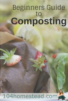 Regardless of whether you garden indoors or out, you should be composting. It can seem overwhelming, but I am going to simplify the process for you.