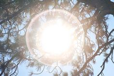 Image result for rinko kawauchi sun spectral light - seeing what we can usually not see