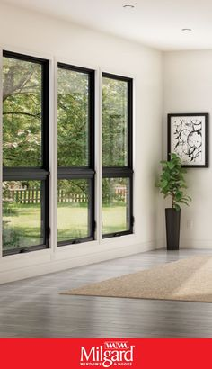 The use of black framed windows and white walls can create a clean, contemporary look in any room. Modern Window Design, Contemporary Windows, Modern House Design, Modern Houses, Blinds For Windows Living Rooms, Dining Room Windows, House Windows, Black Windows Exterior, Modern Windows And Doors