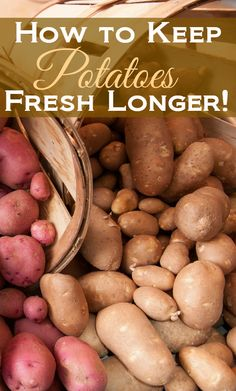 How to make potatoes last longer.doing these simple tricks can make potatoes last for a month or more.how to make potatoes last longer.keep potatoes fresh Healthy Recipes, Cooking Recipes, Easy Cooking, Beginner Cooking, Cooking Food, Cooking Videos, Delicious Recipes, How To Store Potatoes, Storing Potatoes