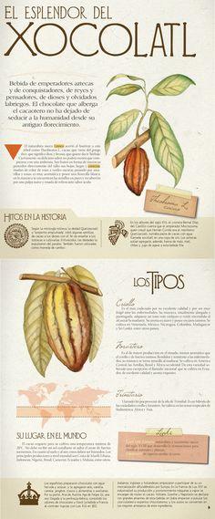 El esplendor del Xocolatl, Ingredientes - Edición Impresa CocinaSemana.com - Últimas Noticias