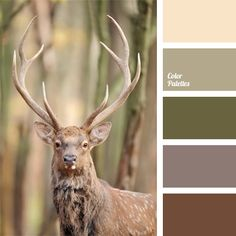 Free collection of color palettes ideas for all the occasions: decorate your house, flat, bedroom, kitchen, living room and even wedding with our color ideas | Page 418 of 428.