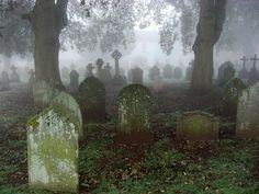 It took until about mid afternoon for the mist to clear today in South Devon and gave an eerie feel to a walk through the graveyard in St Marychurch. Cemetery Headstones, Old Cemeteries, Cemetery Art, Graveyards, Cemetery Monuments, Cemetery Angels, Maleficarum, Between Two Worlds, Mystique