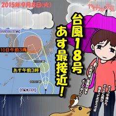 きょう(8日)の天気は「雨が降ったり止んだり」。断続的に雨脚が強まって、雷雨になるおそれも。夜は次第に風も強まってきそう。日中の最高気温はきのうと大体同じで、諏訪市で20度の予想。あすは台風18号が最接近、大雨や強風に要警戒!
