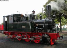 "The 1899 built ""Hoya"" narrow gauge steam locomotive"