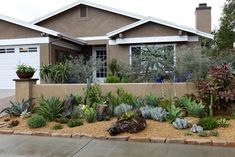 low maintenance front yard landscaping | ... Garden » Succulent gardens for low maintenance front yard landscape