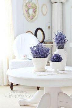 Lavender Decor, Lavender Cottage, Lavender Blue, Lavender Fields, Lavender Flowers, French Lavender, Potted Lavender, Lavender Scent, Rose Flowers