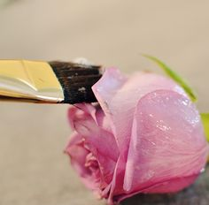 How To Crystallize Flowers. To put on ice cream, or any dessert you want to make fancy but yummy! Edible Roses, Edible Art, Kreative Desserts, Flower Food, Food Decoration, Sugar Flowers, Sugar Rose, Sugar Art, Cake Tutorial