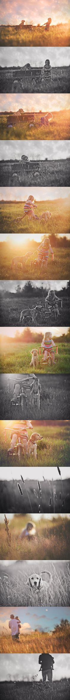 All of these are just lovely by Portland Oregon / Vancouver Washington based Cheryl Myers Photography - Childrens Photography Pet Photography - Family Photography: Cheryl Myers Photography