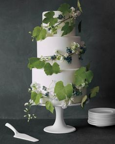 You heard it through the grapevine: Twining this wild climber around three tiers of fondant makes for a cake that's rustic, refined, and right on target for a vineyard or garden wedding. After wrapping the grapevine and pressing it into the frosting, we anchored it in place with toothpicks and added in a few sweet peas and blueberries. This same technique would work well with any flexible fruit vine, like berries or passionfruit—which could inspire the cake's flavor, too. Just keep in mind…