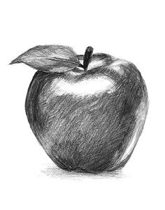 James Simon-Artist Learning to draw Easy Pencil Drawings, Pencil Sketch Drawing, Cool Art Drawings, Realistic Drawings, Art Drawings Sketches, Horse Drawings, Drawing Art, Animal Drawings, Still Life Sketch