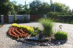 Dwa czerwone dęby - strona 65 - Forum ogrodnicze - Ogrodowisko