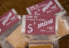 s'more party favor - or girls' camp pillow treat idea!